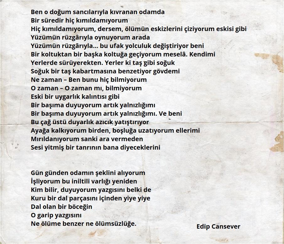 ünlü şairlerden En Güzel 10 Aşk şiiri Hediyemen Blog